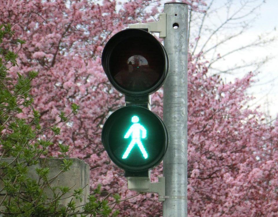 el municipio de pinto sin semáforos